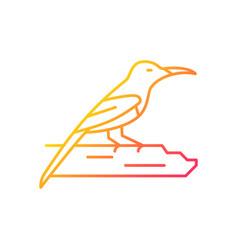 Crimson sunbird gradient linear icon vector