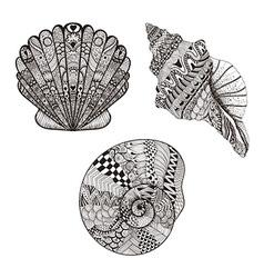 entangle stylized set seashells hand drawn vector image