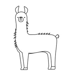 Peruvian llama isolated icon vector