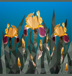 with beautiful yellow iris vector image