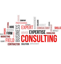 word cloud consulting vector image vector image