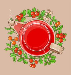 Cranberry tea in teapot vector