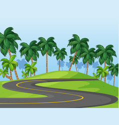 Curve road in park vector