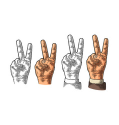 female hand sign victory sign or peace sign or vector image