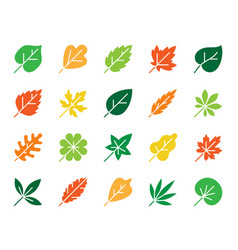 organic leaf color silhouette icons set vector image
