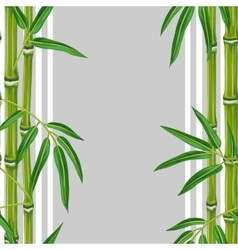Seamless pattern with bamboo plants and leaves vector