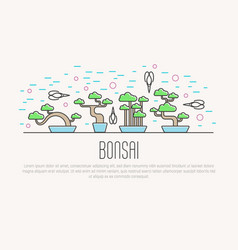 set of flat miniature bonsai in pots with vector image