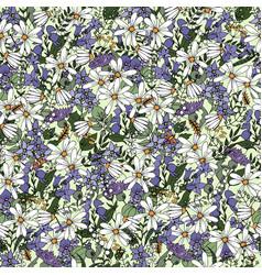wildflower daisies bluebells aconite vector image