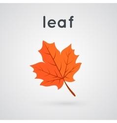 Yellow autumn leaf vector