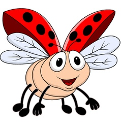 Funny lady bug vector image vector image