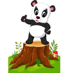 cartoon panda posing on tree stump vector image vector image