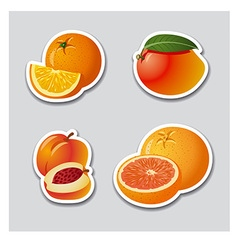 fruits stickers vector image