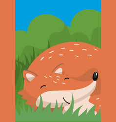 Cute red fox with woodland vector