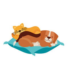 Dog and cat pets on cushion vector