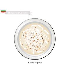 Kiselo mlyako or bulgarian fermented milk with sou vector