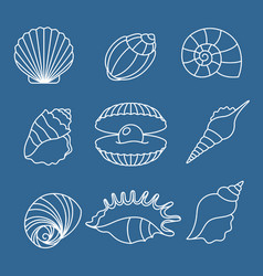 Sea shell outline icons on blue vector