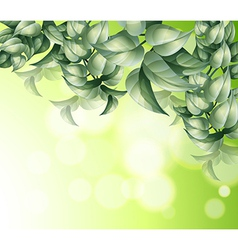 A stationery with many leaves vector image