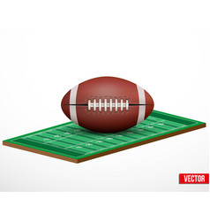 Symbol of a american football game and field vector image vector image