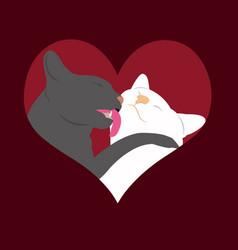 cats in love heart vector image