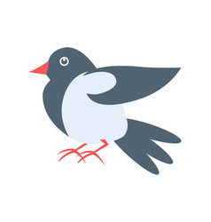 closeup of pigeon on white vector image