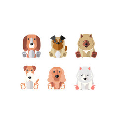 collection dogs different breeds cartoon vector image