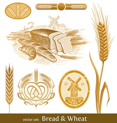 Set - bread and wheat vector