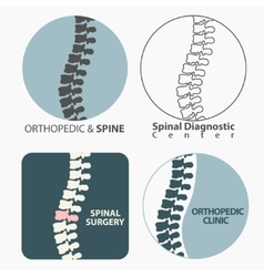 Spine diagnostics center vector image