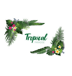 tropical nature decor vector image