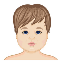 face of the baby vector image