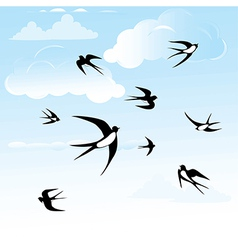 Bird swallow in sky vector