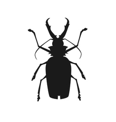 Big Beetle Deer with Horns vector image