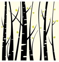 Birch three vector image