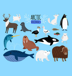 Arctic animals cute animal set of arctic or vector