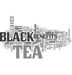 Benefits of black tea text word cloud concept vector