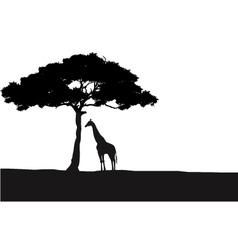 Giraffe silhouette background vector image