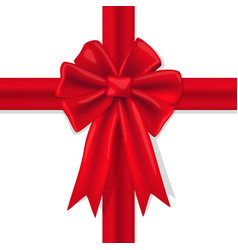 red bow with ribbons on a white background vector image