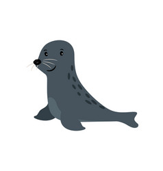 Seal cute sea animal icon vector