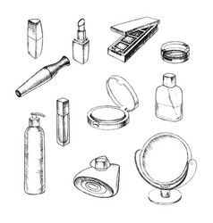 hand drawn collection of make up and cosmetics vector image