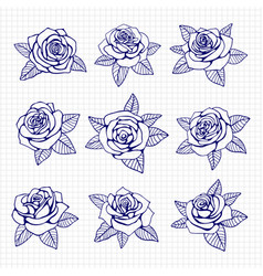 ballpoint pen drawing roses set vector image