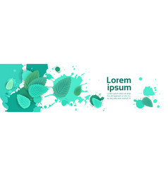 Abstract paint splash and mint leaf set over white vector