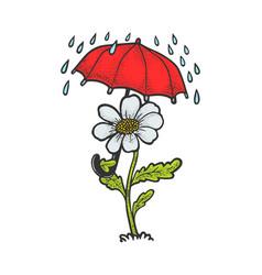 cartoon flower umbrella sketch vector image