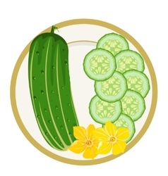 Cucumbers on a plate vector