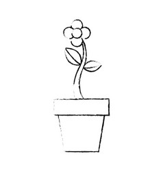 potted flower natural plant decoration vector image