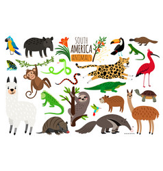 South america animals cartoon guanaco and vector