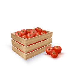 Tomatoes in wooden crate vector