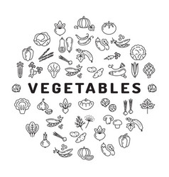 vegetable icon circle infographics mega vector image