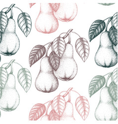 pear vintage background vector image