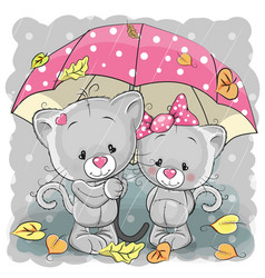 two cute cartoon kittens with umbrella vector image vector image