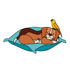 Beagle and bird pet on cushion vector