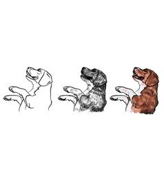 Beaglebegging for food vector image